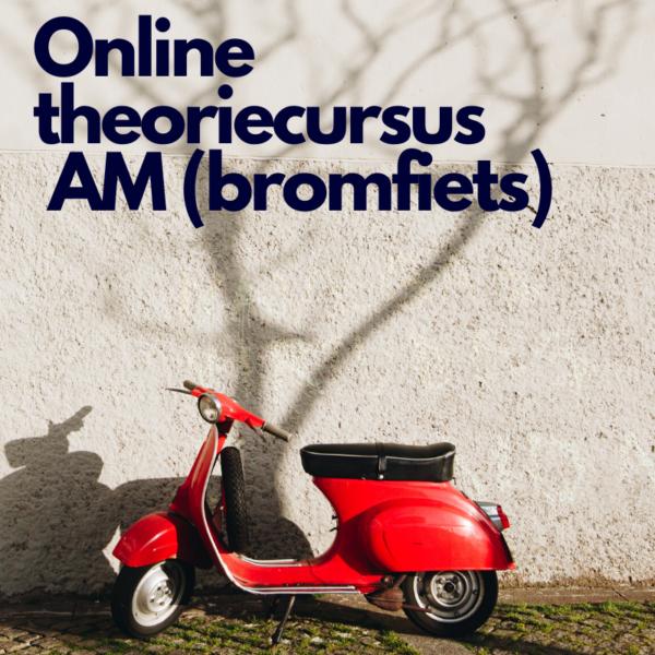 Product online theoriecursus AM